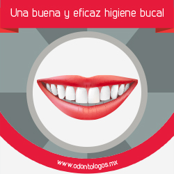 Salud Bucodental General
